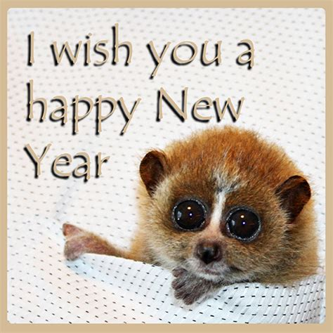 new year animals new years clipart