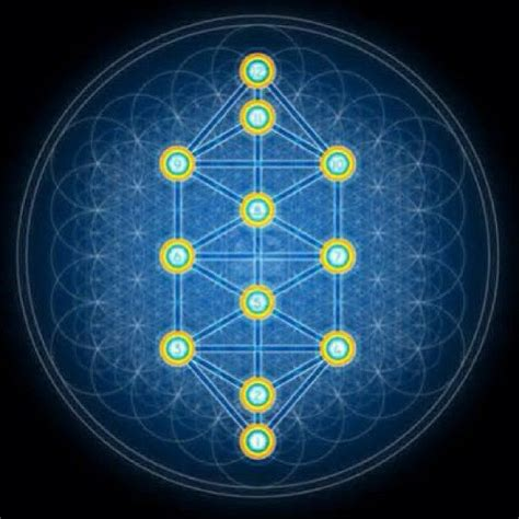 pattern energy founded sacred geometry and the flower of life