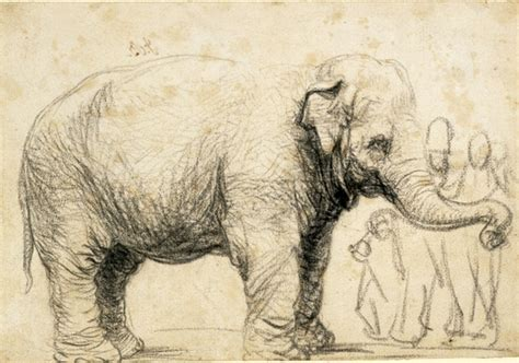 define sketch a famed 17th century elephant by rembrandt is