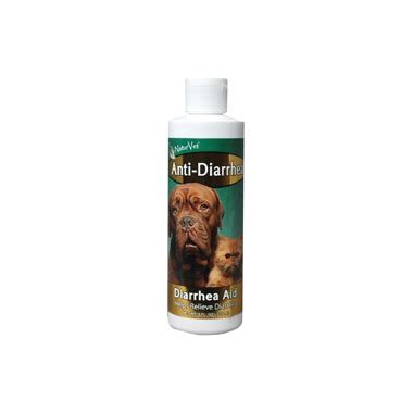 anti diarrhea for dogs buy naturvet anti diarrhea aid for cats dogs at well ca free shipping 35 in canada