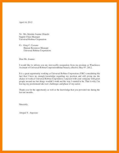 Resignation Letter Format In Mail 8 Resignation Mail Sles Blank Budget Sheet