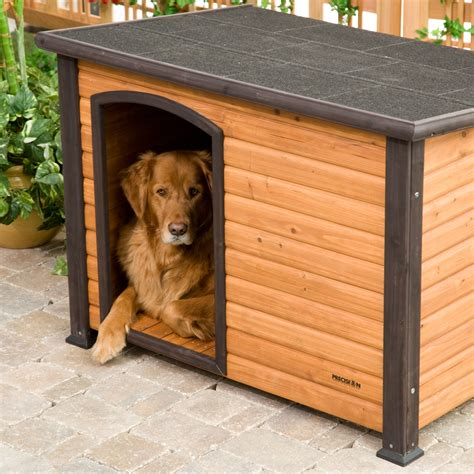 Pdf Diy Wood Dog House Kits Download Wood Carving Shop 187 Plansdownload
