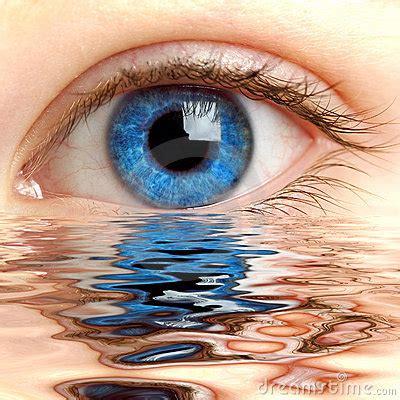 human eye royalty  stock  image