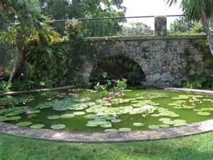 Lotus Pond Pictures Lotus Pond