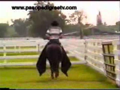 caballo de la sabana youtube vitral terremoto de manizales x teor 237 a paso fino
