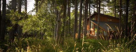Log Cabins Sherwood Forest Uk by Sherwood Forest Log Cabin With Tub Sleeps 4 6 2 3 Rooms
