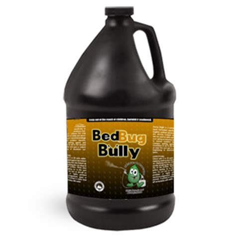 bed bug bully when and where to find bed bugs