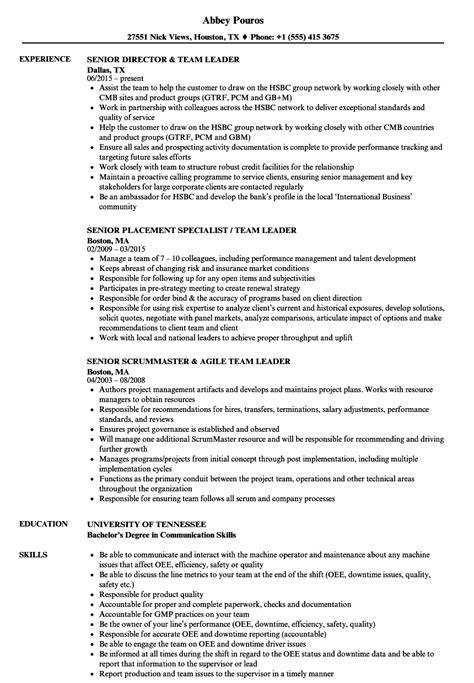 team leader senior team leader resume sles velvet