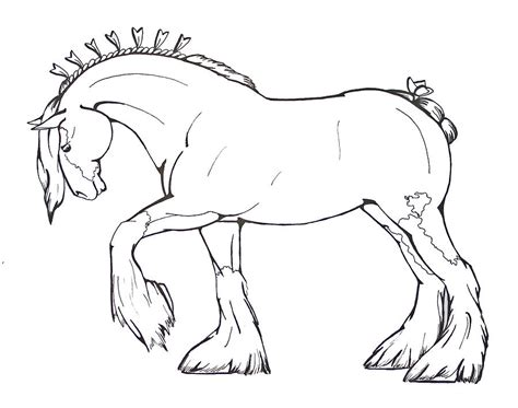 Clydesdale Coloring Pages coloring page 2 drawing by nadler