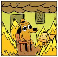 Dog Burning House Meme