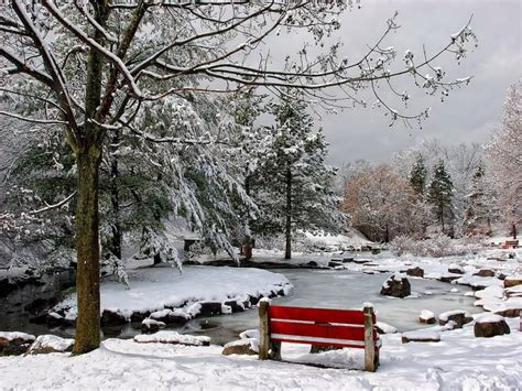 bench winter trees and benches make me smile connect pinterest