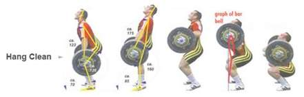 Pro Power Weight Bench The Relationship Between Strength And Sprint Times