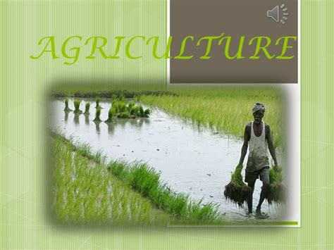 ppt themes related to agriculture agriculture ppt