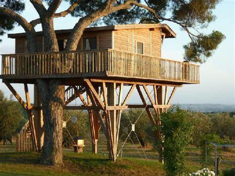 la casa sull albero viterbo la casa sull albero foto di agriturismo la piantata