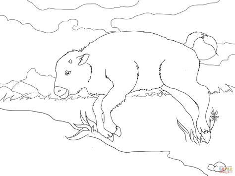 Baby Bison Coloring Page Free Printable Coloring Pages Bison Coloring Page