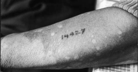 tattoo numbers auschwitz concentration c numbers holocaust tattoos pinterest
