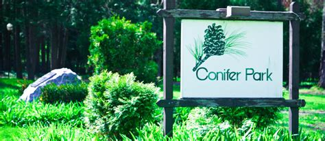 Detox Centers Ny by Conifer Park And Detox Free Rehab Centers