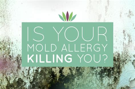 Mold Detox Protocol by Is Your Mold Allergy Killing You Myersdetox