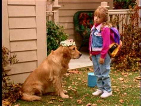 dog on full house quot full house quot the complete seventh season dvd review