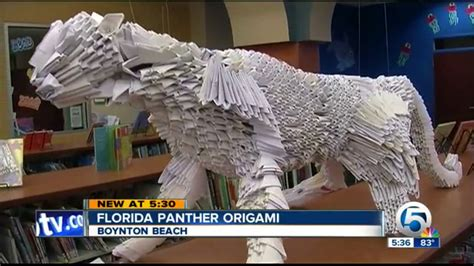 Origami City - channel 5 news station clip on the everglades origami