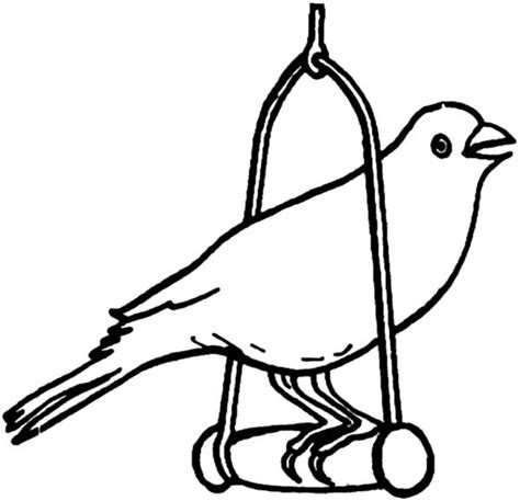 coloring pages canary bird canary bird pet coloring pages best place to color
