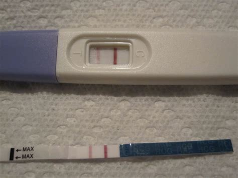 at home pregnancy tests 28 images positive home