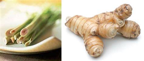 Cooking with Corey: Recipe #201: Lemongrass-Galangal Tea Lemongrass Benefits Cancer