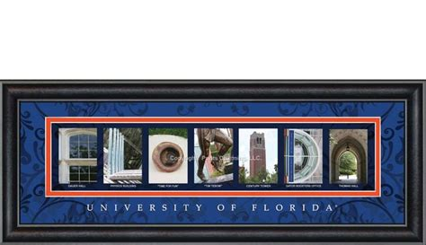 Florida Gator Bar Stools by 1000 Images About Go Gators On