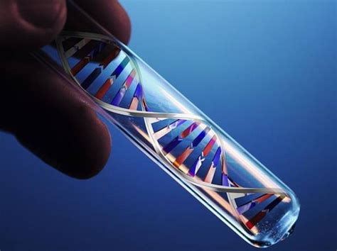 test dna yara test dna tutti ne parlano pochi sanno cos 232 e come