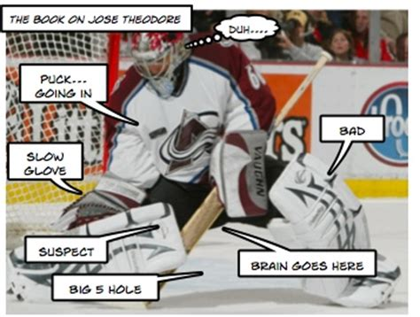 Hockey Goalie Memes - nw goalie preview comic edition