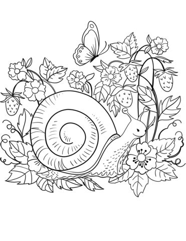 garden snail coloring page snail coloring page free printable coloring pages