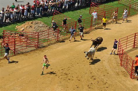 rugged maniac ta running with the bulls on a virginia racetrack the atlantic