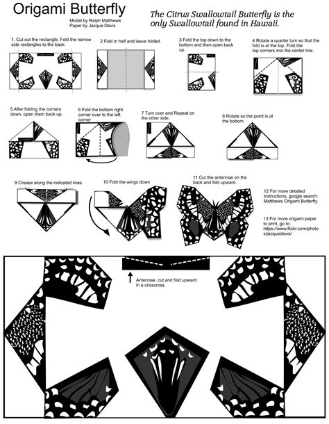Folded Paper Butterfly Template - origami butterfly template with diy free