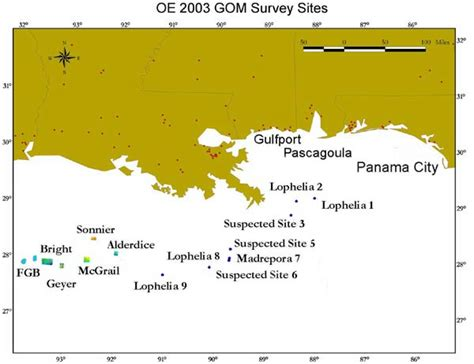 Gulf Of Mexico Continental Shelf by Noaa Explorer Gulf Of Mexico Sea Habitats