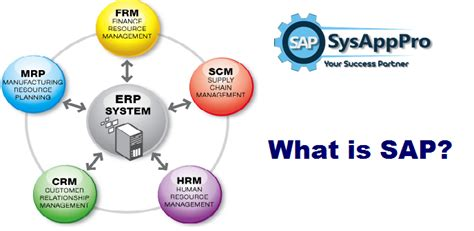 What Is In by What Is Sap Sap Institute In Noida