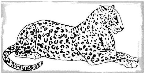 imagenes jaguar para colorear dibujos de leopardos para colorear ver imagenes de tigres