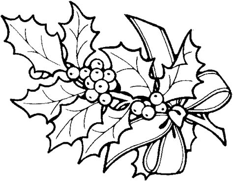 tropical rainforest flower coloring pages clipart best