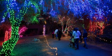 Zoolights Still A Go As Calgary Zoo Set To Fully Reopen Zoo Lights Calgary