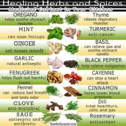 Healing herbs and spices mind body and soul
