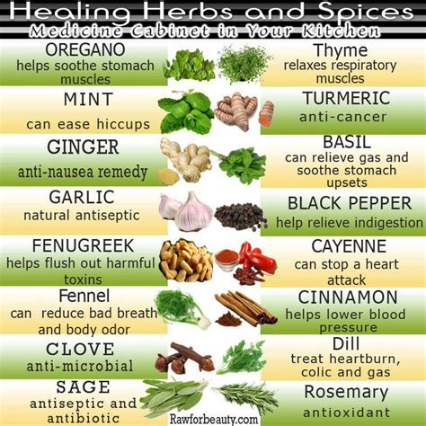 Herbal Food 1000 Images About Gardening And Food Visual Boards On