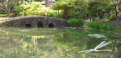 tamborine mountain botanic gardens quot tamborine mountain botanic gardens quot one of australia s finest gardens in tamborine mountain qld