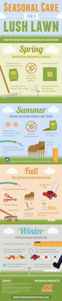summer lawn care tips a natural way to repair brown grass from dog urine