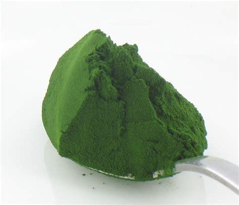 Chlorella For Radiation Detox by Chlorella For Detoxification And Strengthen Immunity