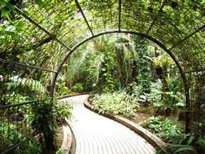 file kyoto botanical garden inside conservatory jpg