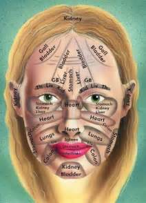 Chinese medicine map your face beauty amp brains