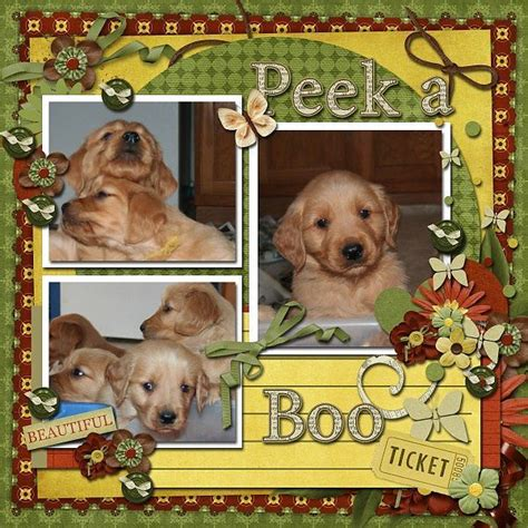 scrapbook layout ideas for pets cute pet scrapbook page pet scrapbooking pinterest