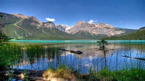 emerald lake colorado mountain landscape hd wallpapers