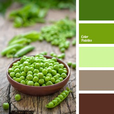 contrasting combination of green and brown color palette
