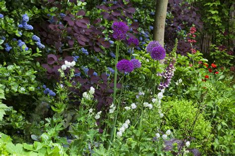 floral design muswell hill town garden design muswell hill london n10