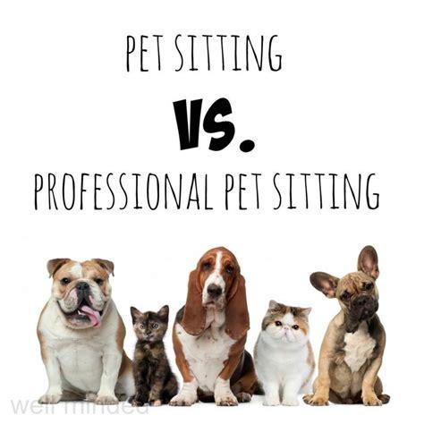 Looks For Your Pet Isnt Walking Season by Best 25 Pet Sitting Ideas On Walking